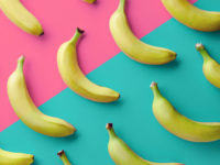 Bananas Are Going Extinct: How, Why and What Can We Do?