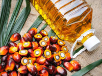Palm Oil. Is It the Worst Cooking Oil?