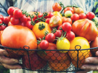 The Most Popular Tomato Types. How They Look and What They're Good For