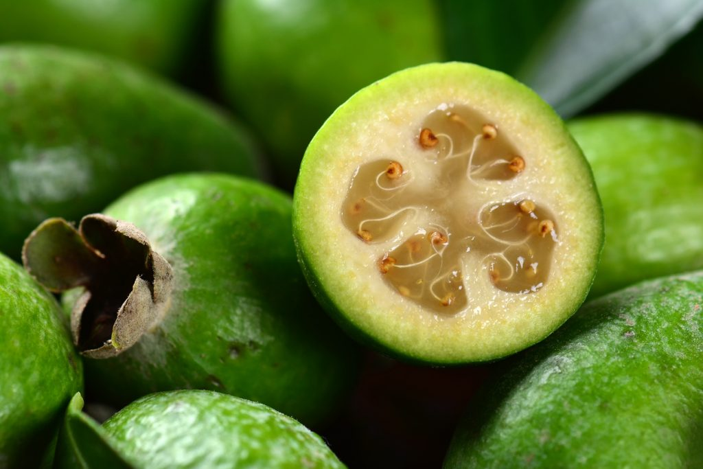 20 Exotic Fruits You Never Knew Existed – SoDelicious | So