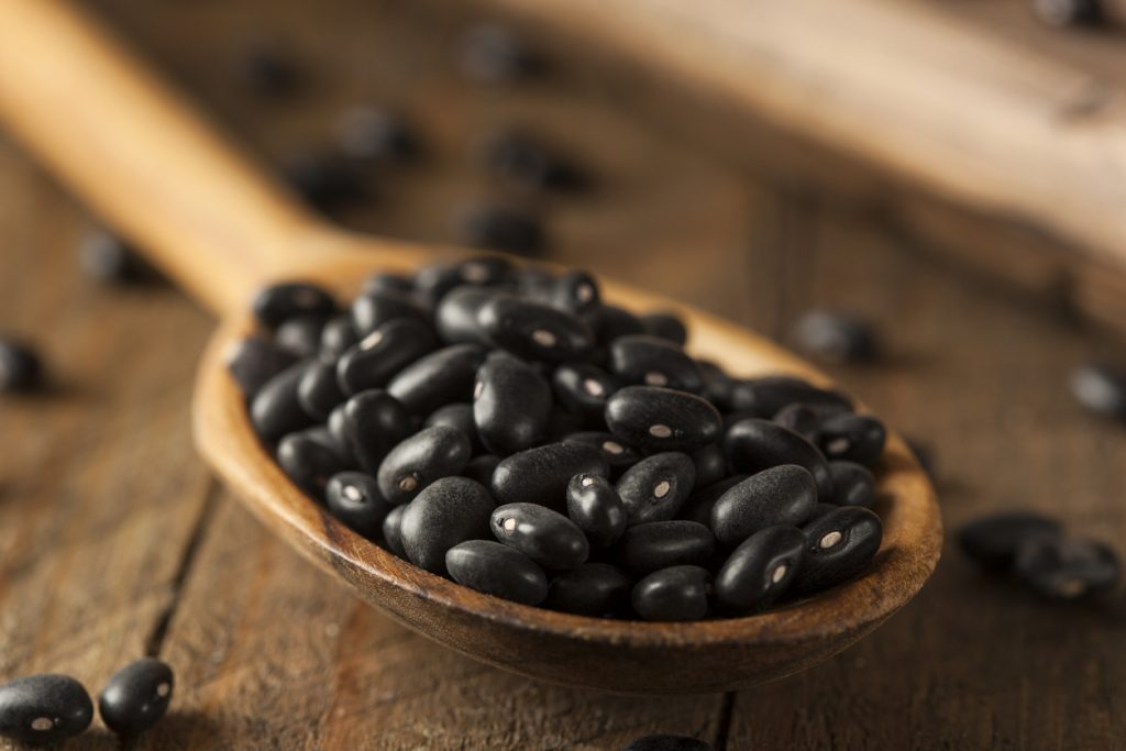 The Beaning of Life: 10 Common Types of Beans to Cook With