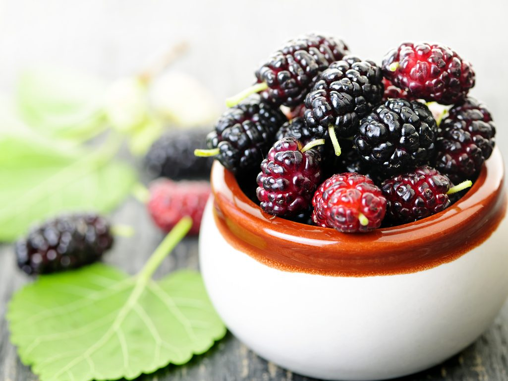 5 Health Benefits of Mulberries You Should Be Interested In